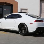 Chevy Camaro ZL1 - Tire Stickers - White Nitto NT555 tire lettering-3